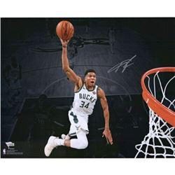 "Giannis Antetokounmpo Signed Milwaukee Bucks ""Dunking Spotlight"" 16x20 Photo (Fanatics Hologram)"