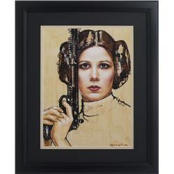 Princess Leia 16x23 Custom Framed Print Display