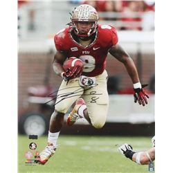 Devonta Freeman Signed Florida State Seminoles 16x20 Photo (Radtke COA)