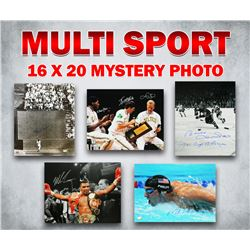 Schwartz Sports Multi Sport Signed Mystery 16x20 Photo – Series 3 - Limited to 100