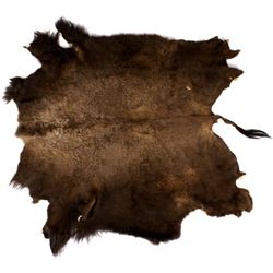 Montana Wild Trophy Buffalo Fur Hide
