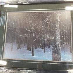 BLACK NIGHT LEP BY ROD TRIBIGER 23457