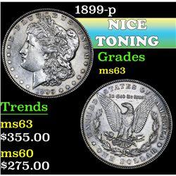 1899-p . . Morgan Dollar $1 Grades Select Unc