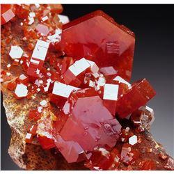 Natural VANADINITE Crystals on Matrix - MOROCCO
