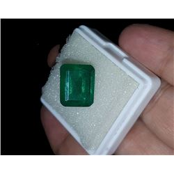 Natural Forest Green Emerald 9.33 Cts