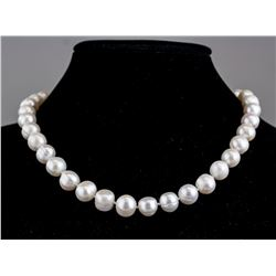 Fresh Water Pearl Necklace CRV $ 1390