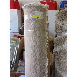 Ivory Shag Area Carpet
