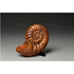 Bob Rotche | Ammonite Memories