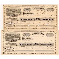 People's Ice Company Stock Certificates   (107105)