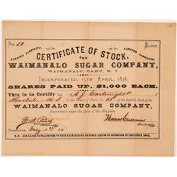 Waimanalo Sugar Company Stock Certificate issued to AJ Cartwright, Father of Baseball   (107289)