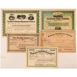 Hawaii Land & Sugar Stock Certificates   (107285)