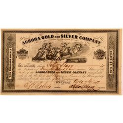 Aurora Gold and Silver Company Stock   (104006)