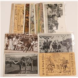Western Rodeo-Related postcards   (105153)