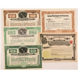 Arizona  Cactus  Mining Company Stock Certificates   (104285)