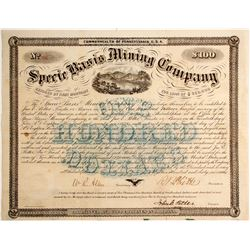 Specie Basis Mining Warrant   (89820)