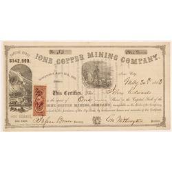 Ione Copper Mining Company Stock Certificate   (104341)