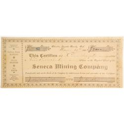 Seneca Mining Company Stock, Badger Hill Mining District, Nevada County   (79224)