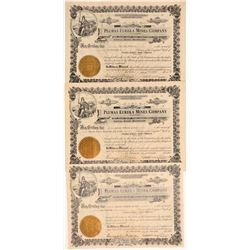 Plumas Eureka Mines Co. Stock Certificates incl. #1 and #2   (107130)