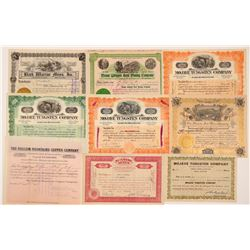 San Bernardino & Riverside Mining Stock Certificate Collection   (107269)