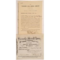 Tuolumne Gold Mining Co., Ltd. Stock Certificate & Bond   (104405)