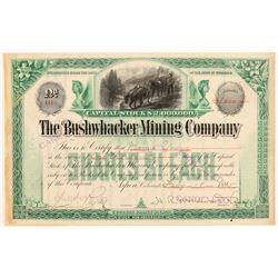 Bushwhacker Mining Company Stock Certificate   (107173)