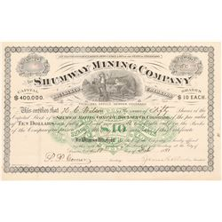 Shumway Mining Company Stock Certificate   (104318)