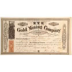 Nye Gold Mining Company Stock   (79743)