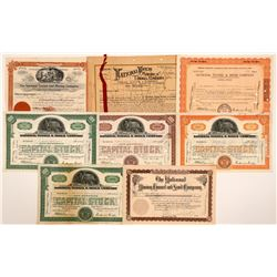 National Tunnel & Mines Co. Stock Collection   (104252)