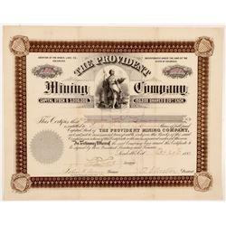 Provident Mining Company Stock Certificate   (104462)