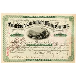 Small Hopes Cons. Mining Company Stock Certificate   (104349)