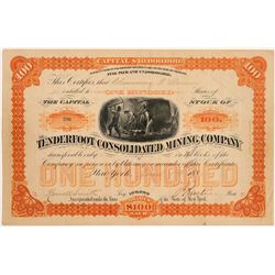 Tenderfoot Cons. Mining Company Stock Certificate   (104329)