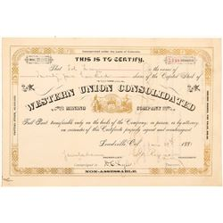 Western Union Consolidated Mining Company Stock Certificate   (104304)