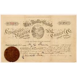 Hall's Gulch Cons. Mining & Tunnel Co. Stock Certificate   (104476)