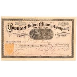 Cosmos Silver Mining Co of NY   (106603)