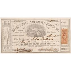 Cayuga Gold and Silver MC Stock   (106606)