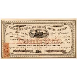 Tennessee Gold & Silver Mining Co. Stock Certificate   (107059)