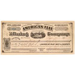American Flat Mining Company Stock Certificate   (107019)