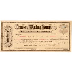 Genesee Mining Company Stock Certificate   (107009)