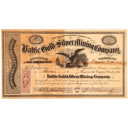 Baltic Gold and Silver MC stock   (108095)