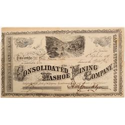 Consolidated Washoe Mining Company Stock   (103583)