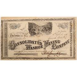 Consolidated Washoe Mining Company Stock   (103583)