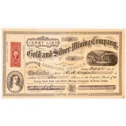 Jenny Lind Gold & Silver Mining Company Stock   (108067)