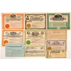 Ten Different Goldfield Mining Stock Certificates   (107093)
