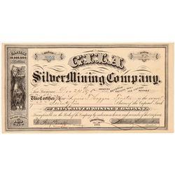 Gila Silver Mining Company Stock Certificate   (107011)