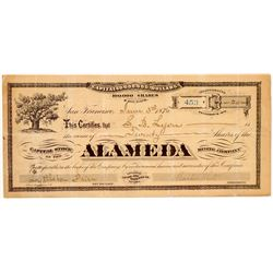 Alameda Mining Company Stock Certificate   (107069)