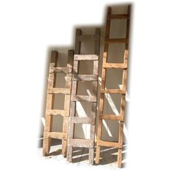 Underground Mine Ladders - lot of 3   (85700)