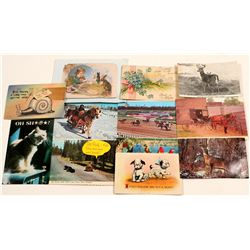 Post Cards / Animal Cards / 12 items.   (105379)