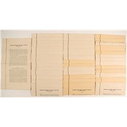 Goldfield Deep Mines of Nevada Sales Sheets (40)   (89809)