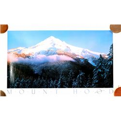 Mounted Photo of Mount Hood in Oregon    (91354)