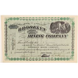 Brooklyn Mining Company Stock Certificate    (107159)